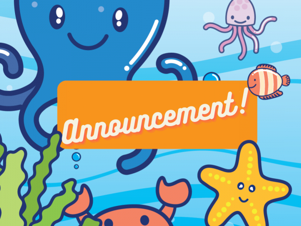 Ocean Adventures - latest lockdown news