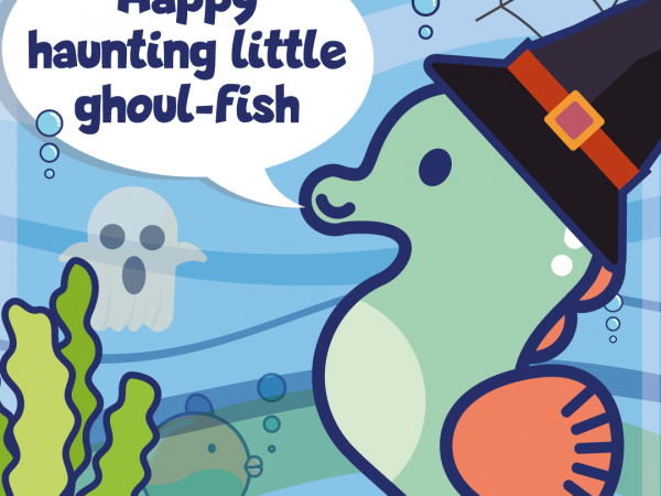 Ocean Adventurers Spook-tacular 2020 events!